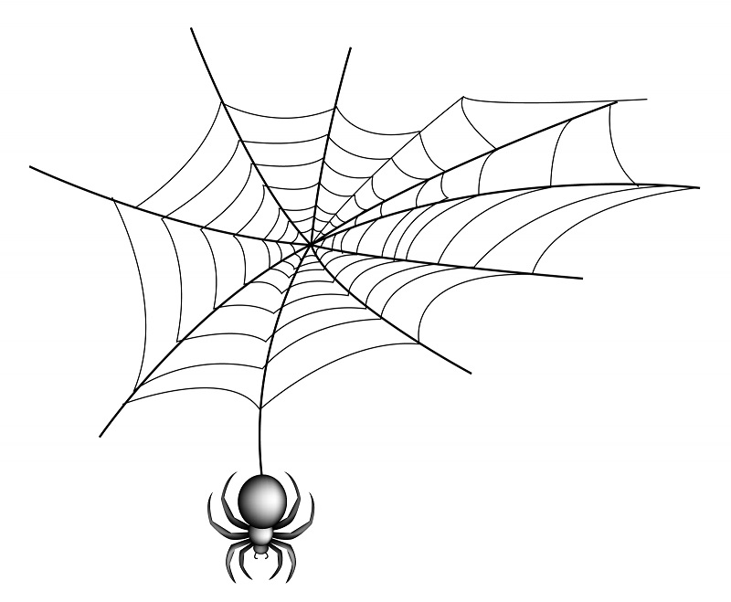 Spider_with_web